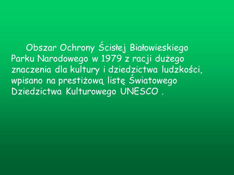Obszar Ochrony Ścisłej Białowieskiego Parku Narodowego w 1979 z racji dużego znaczenia dla kultury i dziedzictwa ludzkości, wpisano na prestiżową list