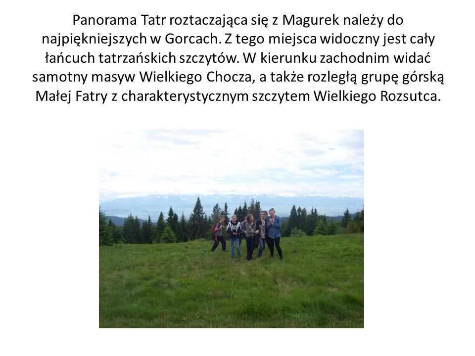 Panorama Tatr roztaczająca się z Magurek należy do najpiękniejszych w Gorcach. Z tego miejsca widoczny jest cały łańcuch tatrzańskich szczytów. W kier