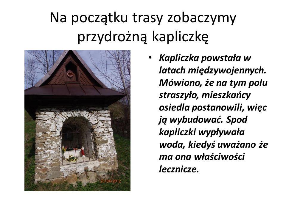 Na początku trasy zobaczymy przydrożną kapliczkę Kapliczka powstała w latach międzywojennych. Mówiono, że na tym polu straszyło, mieszkańcy osiedla po