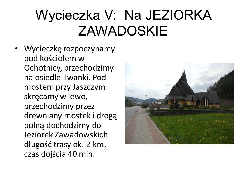 Wycieczka V: Na JEZIORKA ZAWADOSKIE Wycieczkę rozpoczynamy pod kościołem w Ochotnicy, przechodzimy na osiedle Iwanki. Pod mostem przy Jaszczym skręcam