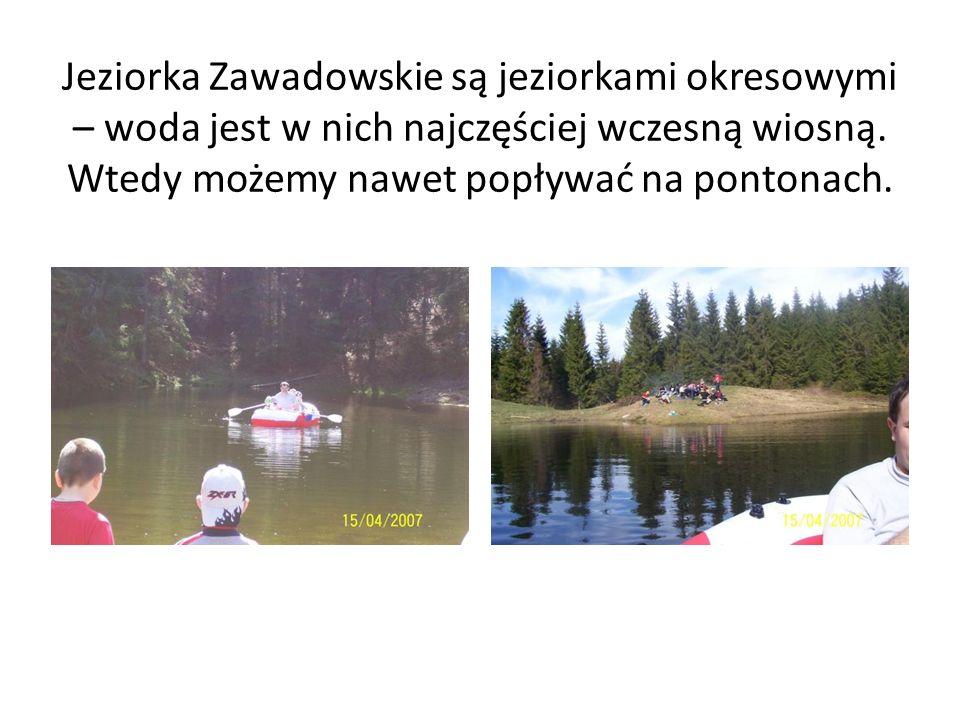 Jeziorka Zawadowskie są jeziorkami okresowymi – woda jest w nich najczęściej wczesną wiosną. Wtedy możemy nawet popływać na pontonach.