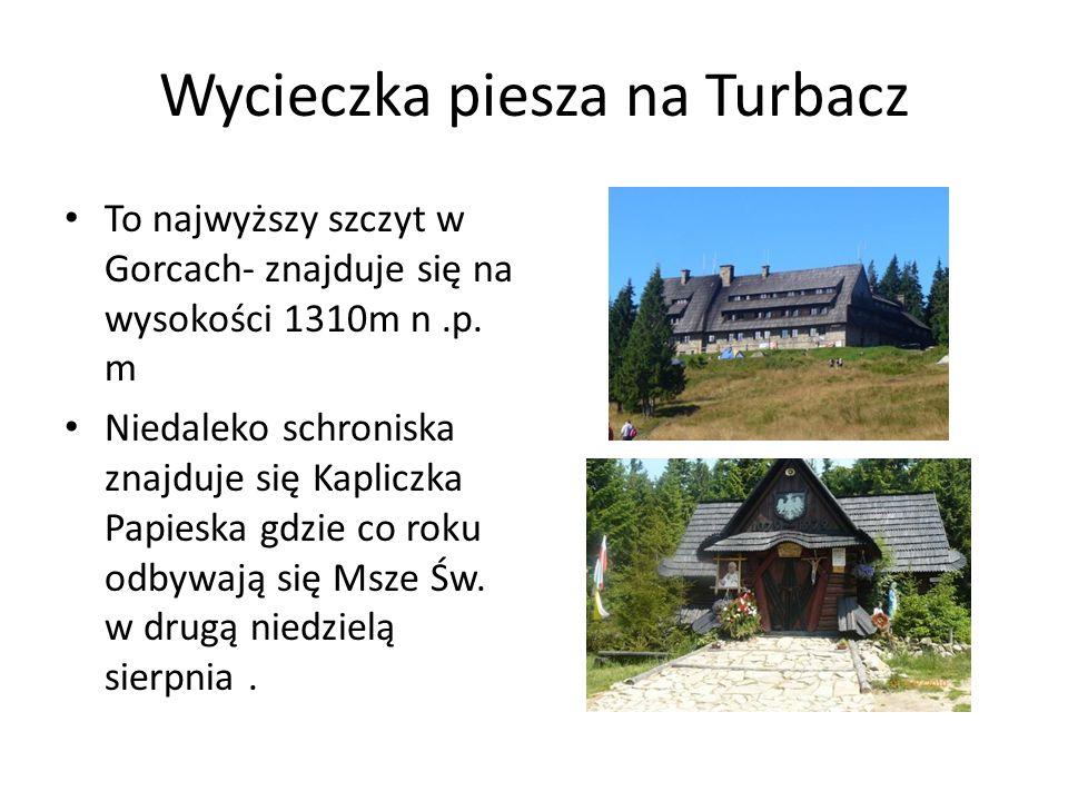 Wycieczka piesza na Turbacz To najwyższy szczyt w Gorcach- znajduje się na wysokości 1310m n.p. m Niedaleko schroniska znajduje się Kapliczka Papieska