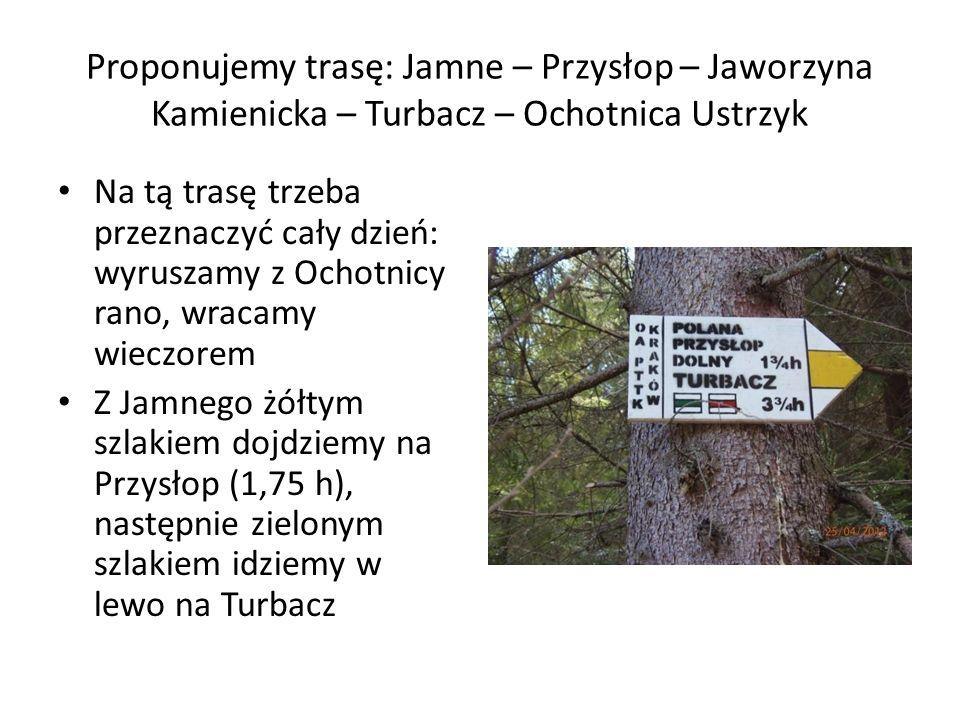 Proponujemy trasę: Jamne – Przysłop – Jaworzyna Kamienicka – Turbacz – Ochotnica Ustrzyk Na tą trasę trzeba przeznaczyć cały dzień: wyruszamy z Ochotn