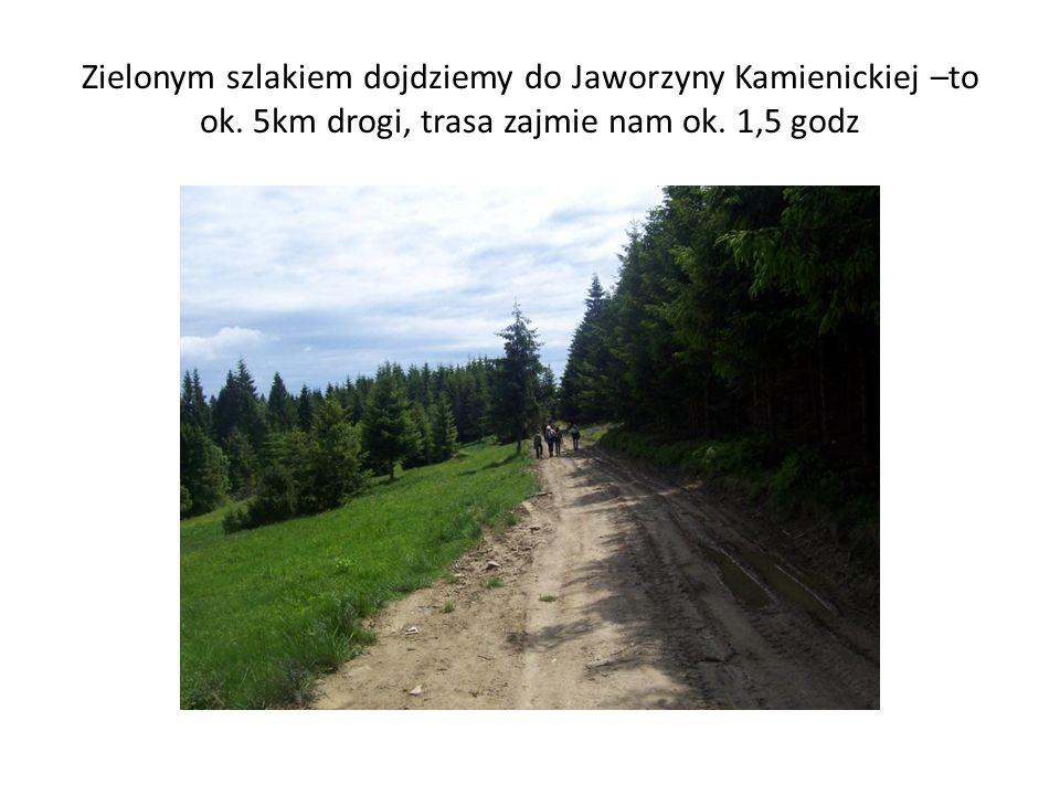 Zielonym szlakiem dojdziemy do Jaworzyny Kamienickiej –to ok. 5km drogi, trasa zajmie nam ok. 1,5 godz