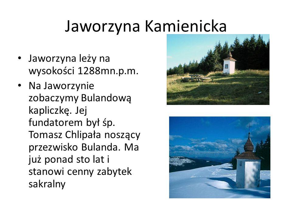 Jaworzyna Kamienicka Jaworzyna leży na wysokości 1288mn.p.m. Na Jaworzynie zobaczymy Bulandową kapliczkę. Jej fundatorem był śp. Tomasz Chlipała noszą