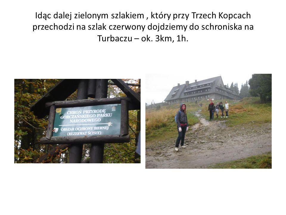 Idąc dalej zielonym szlakiem, który przy Trzech Kopcach przechodzi na szlak czerwony dojdziemy do schroniska na Turbaczu – ok. 3km, 1h.