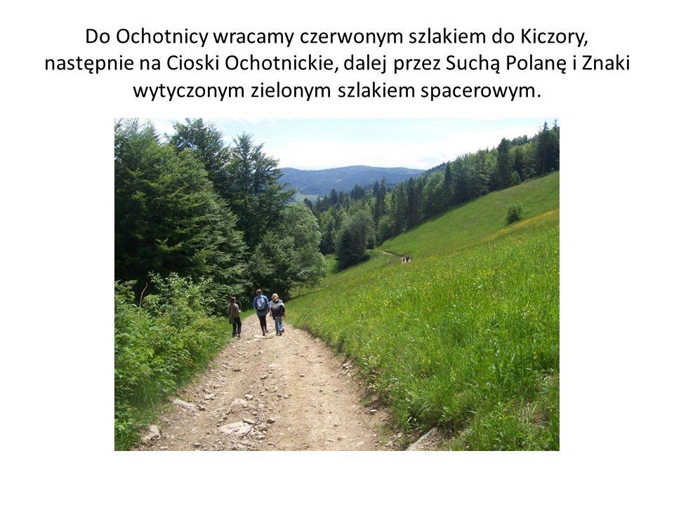 Do Ochotnicy wracamy czerwonym szlakiem do Kiczory, następnie na Cioski Ochotnickie, dalej przez Suchą Polanę i Znaki wytyczonym zielonym szlakiem spa