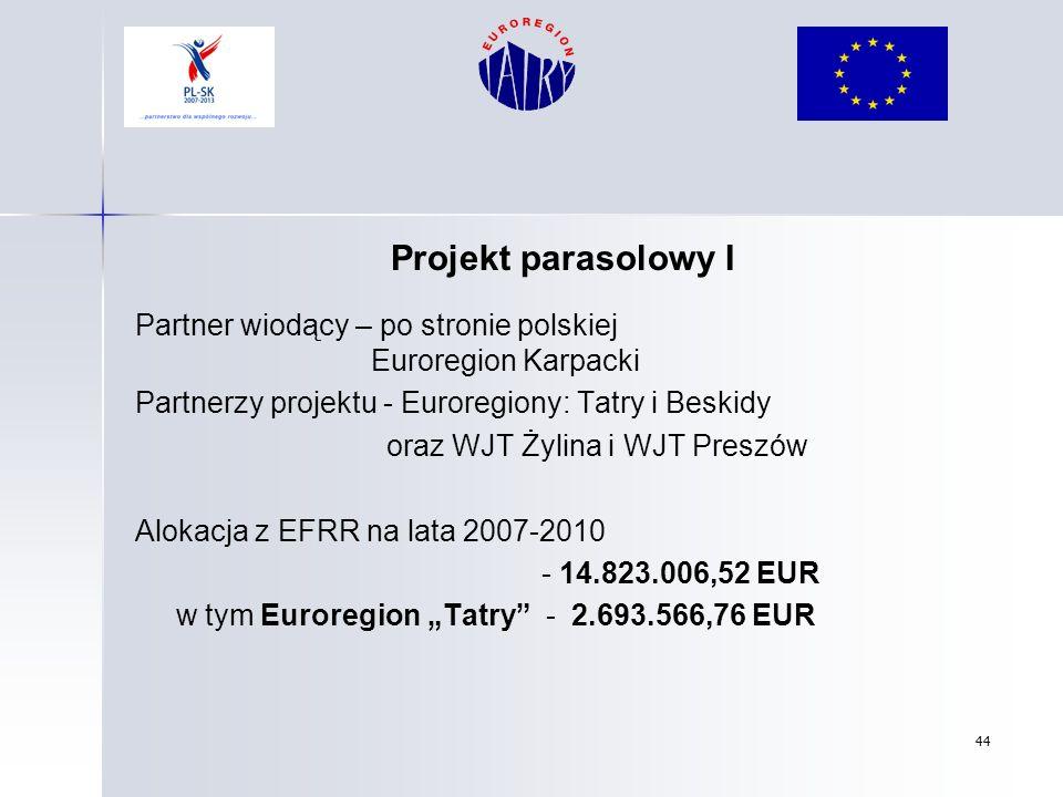 44 Projekt parasolowy I Partner wiodący – po stronie polskiej Euroregion Karpacki Partnerzy projektu - Euroregiony: Tatry i Beskidy oraz WJT Żylina i