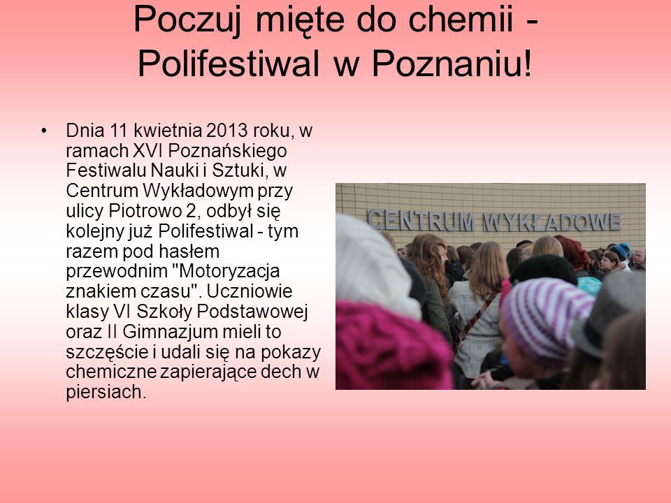 Poczuj mięte do chemii - Polifestiwal w Poznaniu.
