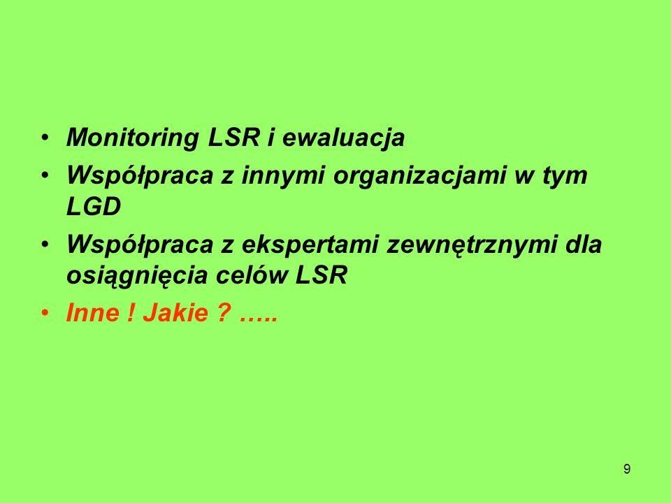 9 Monitoring LSR i ewaluacja Współpraca z innymi organizacjami w tym LGD Współpraca z ekspertami zewnętrznymi dla osiągnięcia celów LSR Inne .