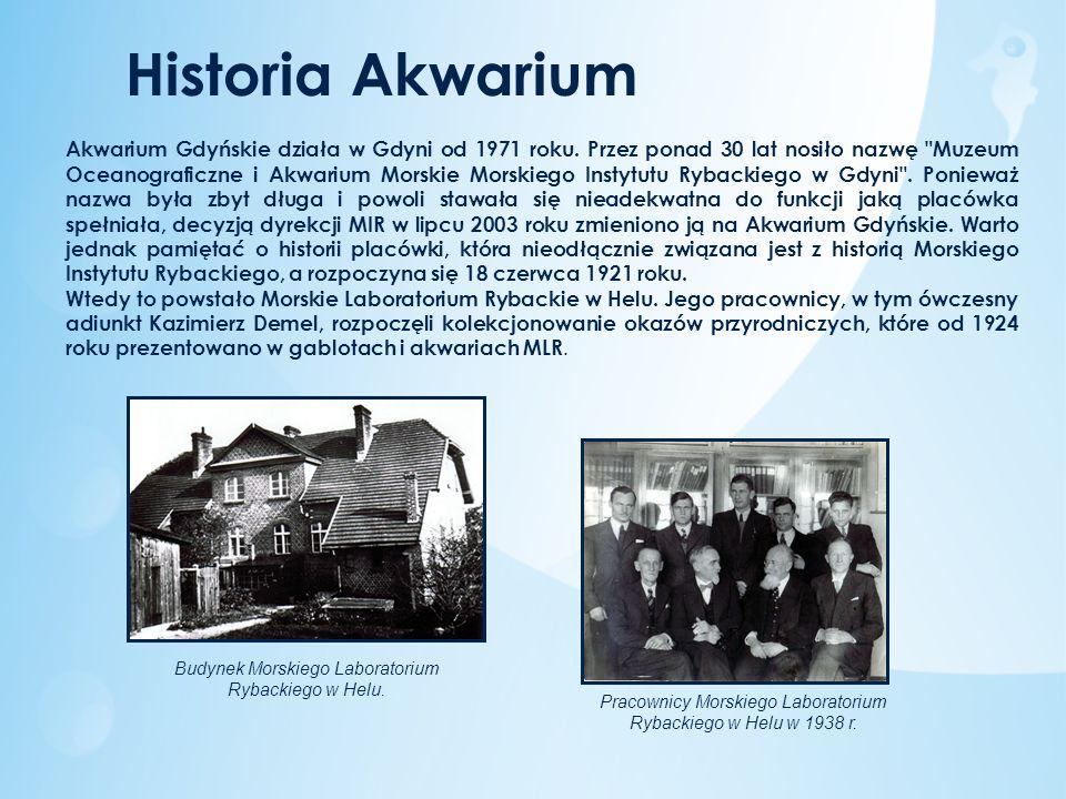 Historia Akwarium Akwarium Gdyńskie działa w Gdyni od 1971 roku. Przez ponad 30 lat nosiło nazwę