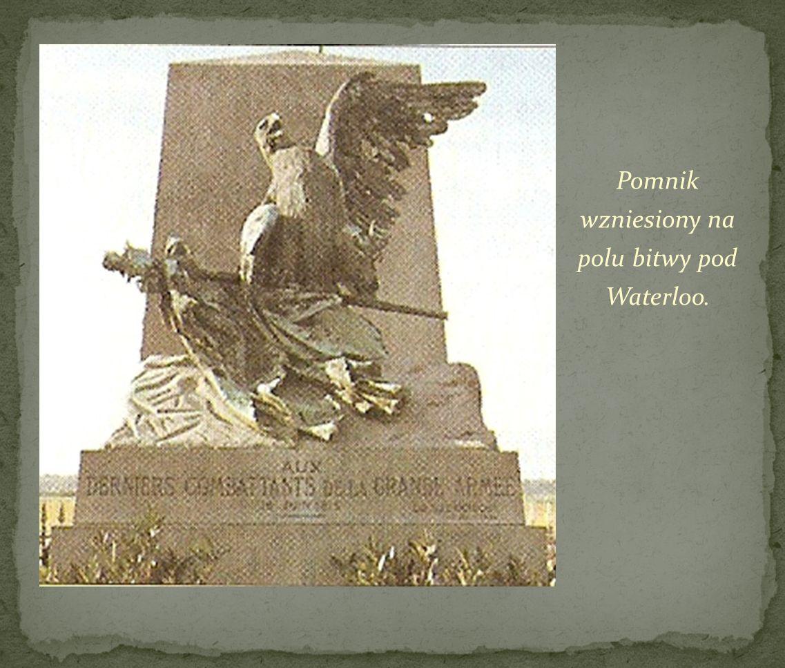 Pomnik wzniesiony na polu bitwy pod Waterloo.
