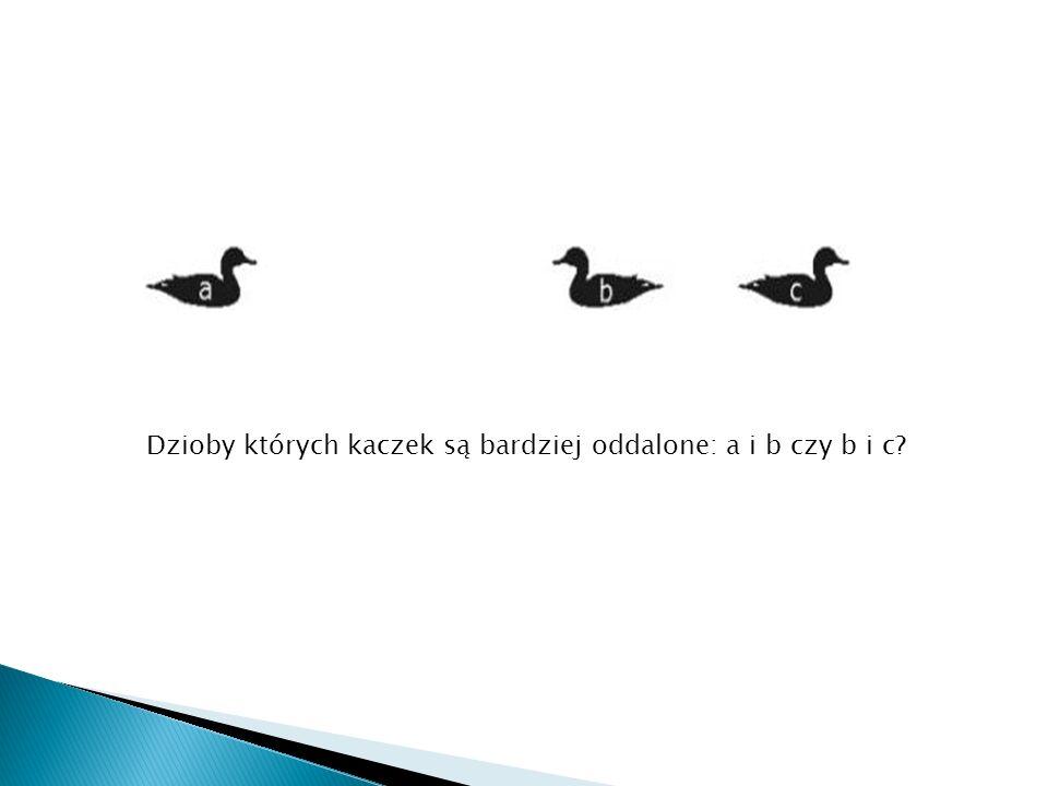 Dzioby których kaczek są bardziej oddalone: a i b czy b i c?