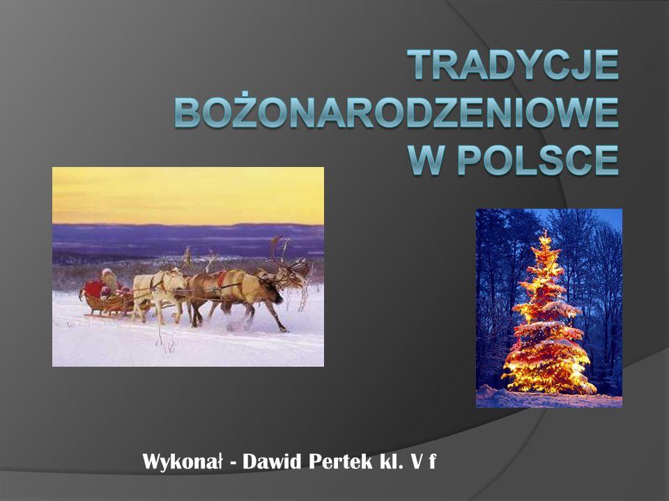 Wykona ł - Dawid Pertek kl. V f