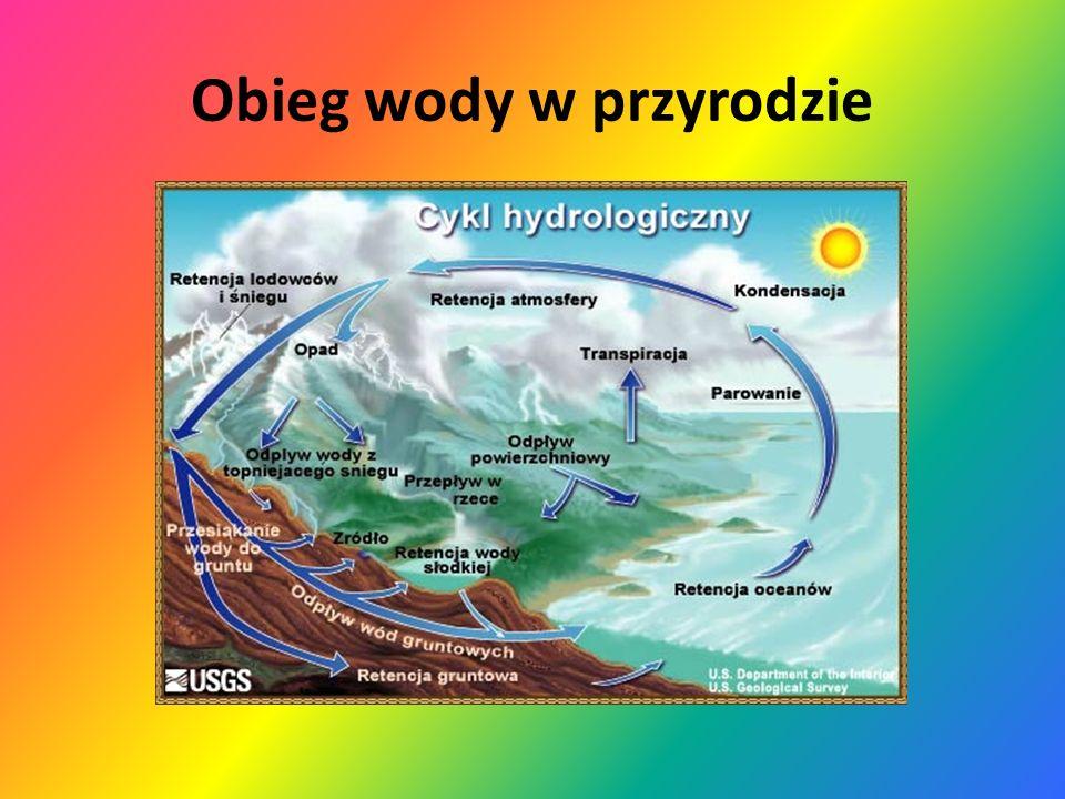 Na kolejnych zajęciach omawialiśmy następujące zagadnienia: obieg wody w przyrodzie budowa cząsteczki wody i jej właściwości wpływ kwaśnych deszczy na