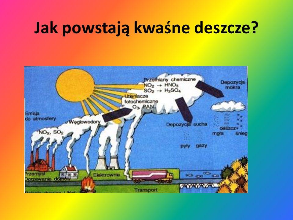 Działalność kwaśnych deszczy niszczenie budynków i pomników obumieranie drzew i innych roślin zanieczyszczenie gleby i wody