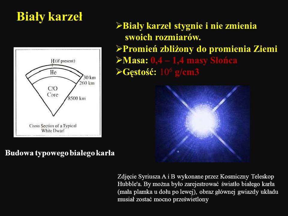 Biały karzeł stygnie i nie zmienia swoich rozmiarów. Promień zbliżony do promienia Ziemi Masa: 0,4 – 1,4 masy Słońca Gęstość: 10 6 g/cm3 Budowa typowe