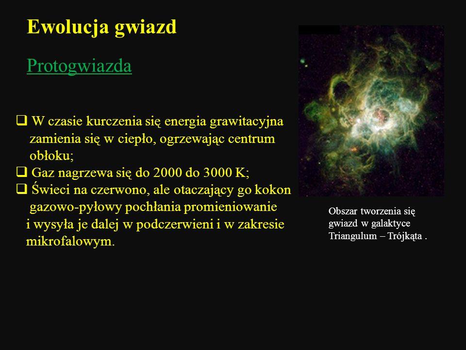 Protogwiazda W czasie kurczenia się energia grawitacyjna zamienia się w ciepło, ogrzewając centrum obłoku; Gaz nagrzewa się do 2000 do 3000 K; Świeci