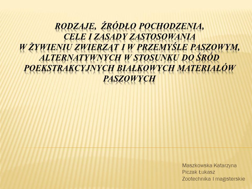 Maszkowska Katarzyna Piczak Łukasz Zootechnika I magisterskie