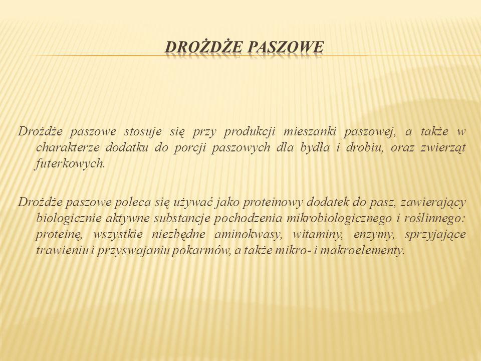 Woda max.10% Tłuszcz 3 – 10%; podnosi zawartość energetyczną paszy Białko min.