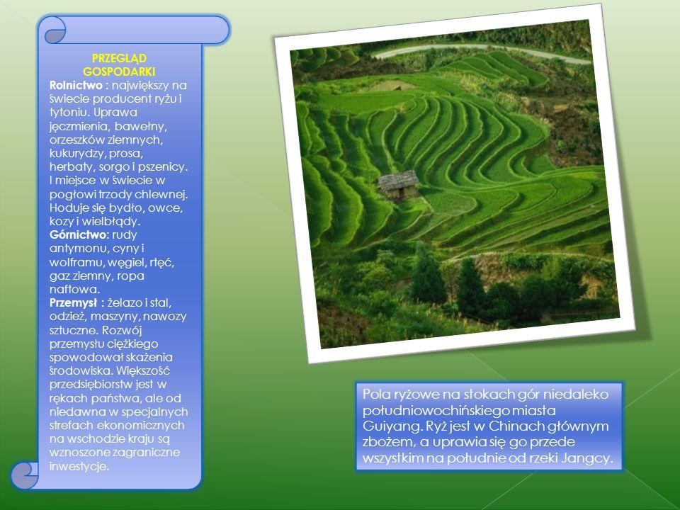 Przed 1978 rolnictwo chińskie było zorganizowane w komuny. Obecnie rodziny chłopskie muszą dostarczać część zbiorów państwu, ale resztę mogą sprzedać