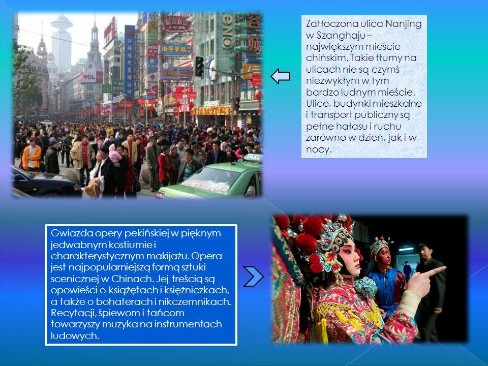 CZOU MEIN Czou Mein jest bardzo popularnym daniem w południowych Chinach. Składa się z makaronu jajecznego smażonego z warzywami i kawałeczkami kurcza