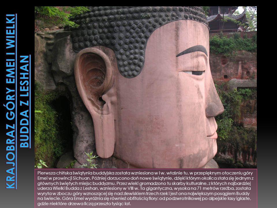 Obszar 924,000 hektarów obejmuje 7 rezerwatów naturalnych oraz 9 parków krajobrazowych w górach Qionglai i Jiajin. Żyje tam 30 procent światowej popul