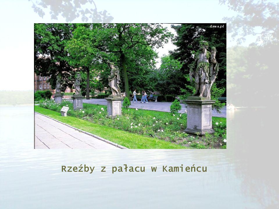 Rzeźby z pałacu w Kamieńcu