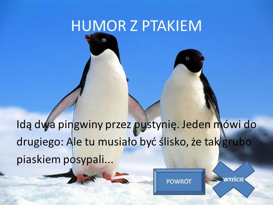 HUMOR Z PTAKIEM Idą dwa pingwiny przez pustynię. Jeden mówi do drugiego: Ale tu musiało być ślisko, że tak grubo piaskiem posypali... WYJŚCIE POWRÓT