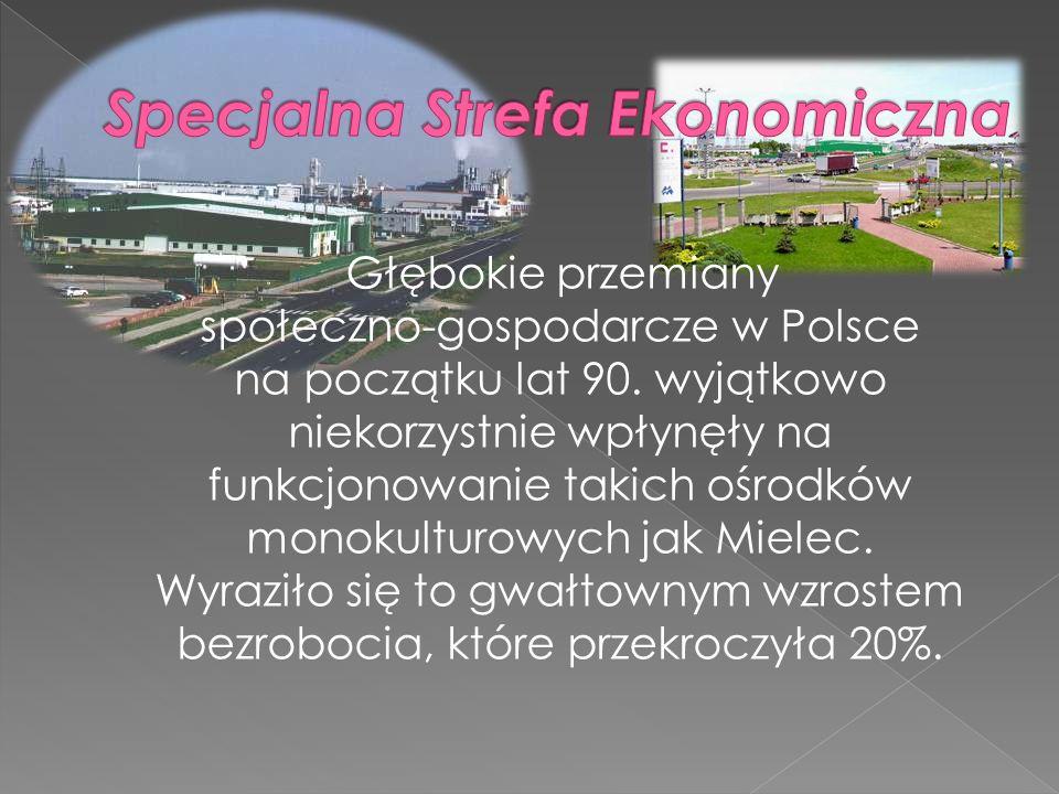 Głębokie przemiany społeczno-gospodarcze w Polsce na początku lat 90. wyjątkowo niekorzystnie wpłynęły na funkcjonowanie takich ośrodków monokulturowy