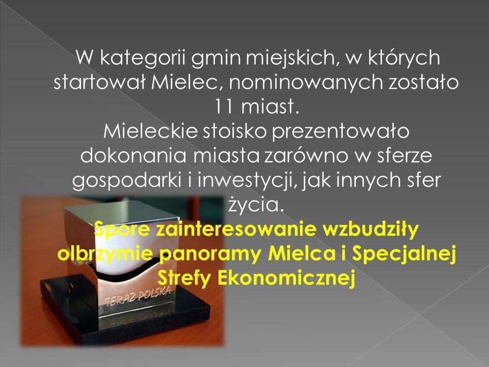 W kategorii gmin miejskich, w których startował Mielec, nominowanych zostało 11 miast. Mieleckie stoisko prezentowało dokonania miasta zarówno w sferz