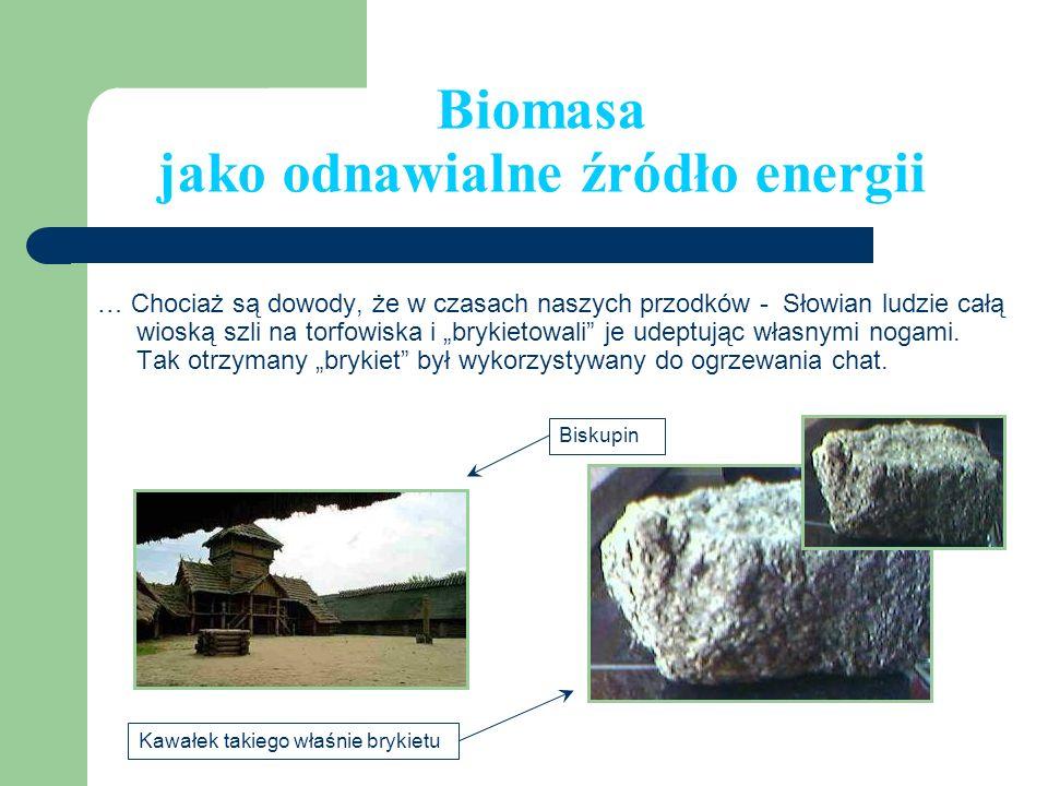 Biomasa jako odnawialne źródło energii … Chociaż są dowody, że w czasach naszych przodków - Słowian ludzie całą wioską szli na torfowiska i brykietowa