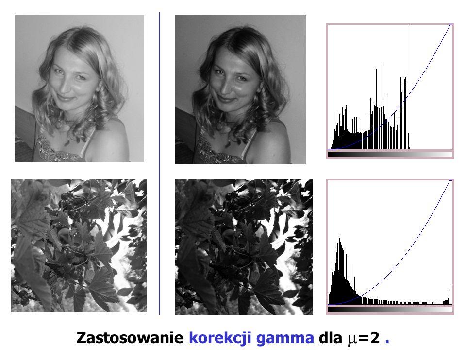 Zastosowanie korekcji gamma dla =2.