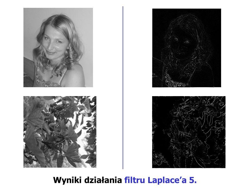 Wyniki działania filtru Laplacea 5.