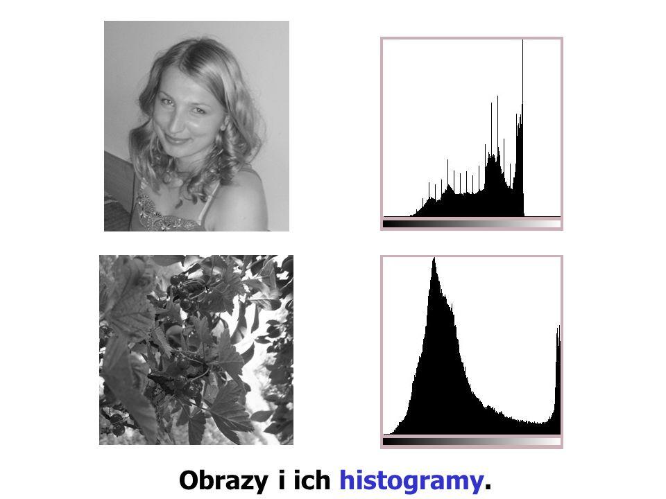 Obrazy i ich histogramy.