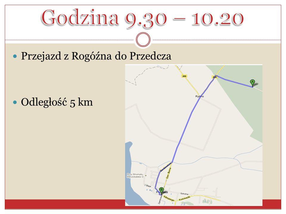 Przejazd z Rogóźna do Przedcza Odległość 5 km