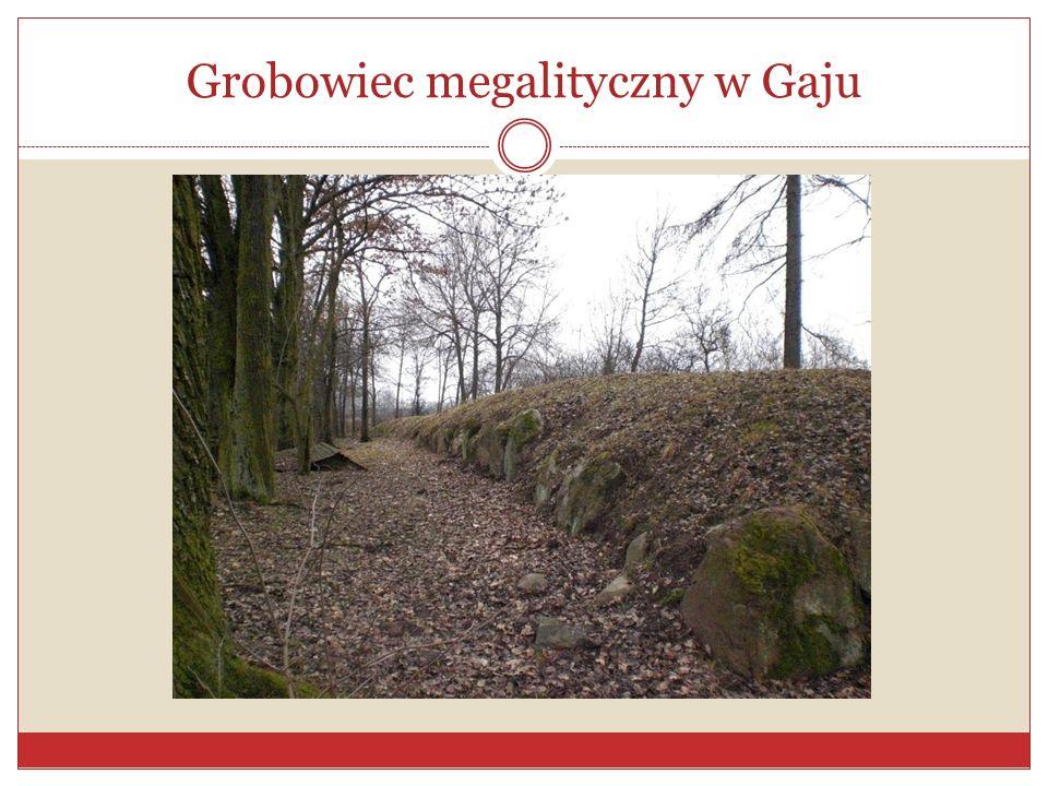Grobowiec megalityczny w Gaju