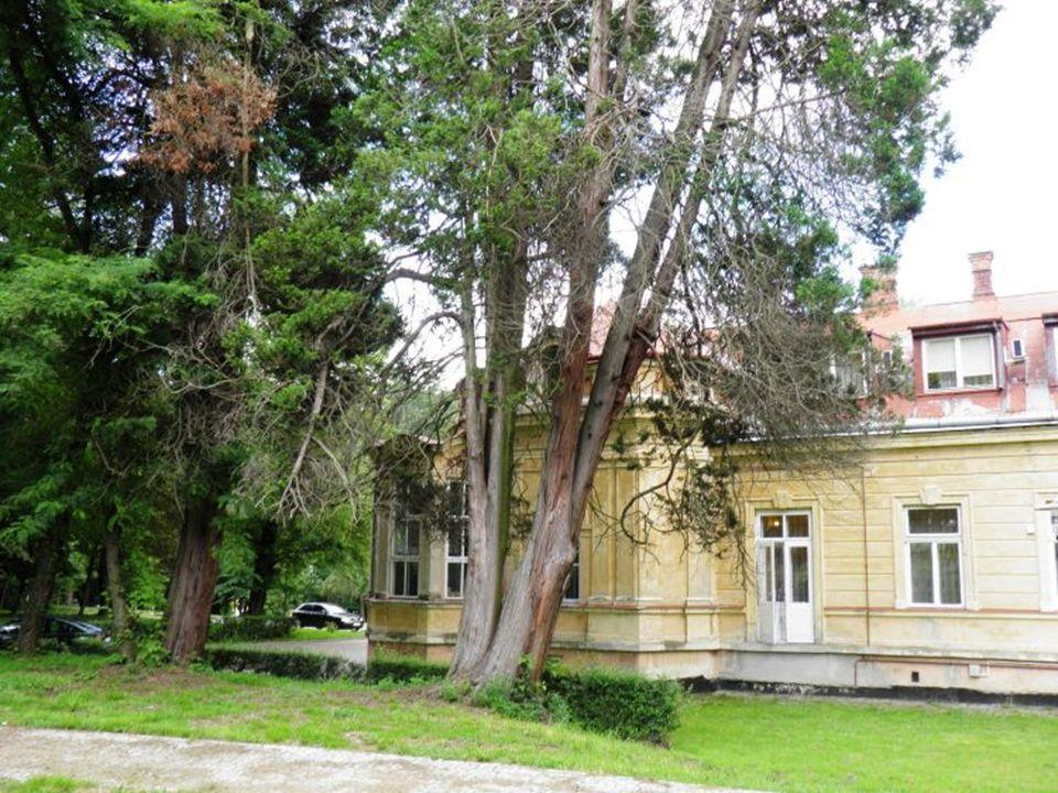 Hadle Szklarskie Parterowy, murowany budynek o urozmaiconej sylwetce poprzedza szeroki taras łączący dom z ogrodem.