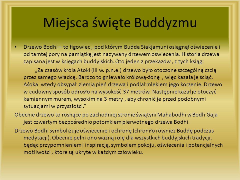 Miejsca święte Buddyzmu Drzewo Bodhi – to figowiec, pod którym Budda Siakjamuni osiągnął oświecenie i od tamtej pory na pamiątkę jest nazywany drzewem oświecenia.