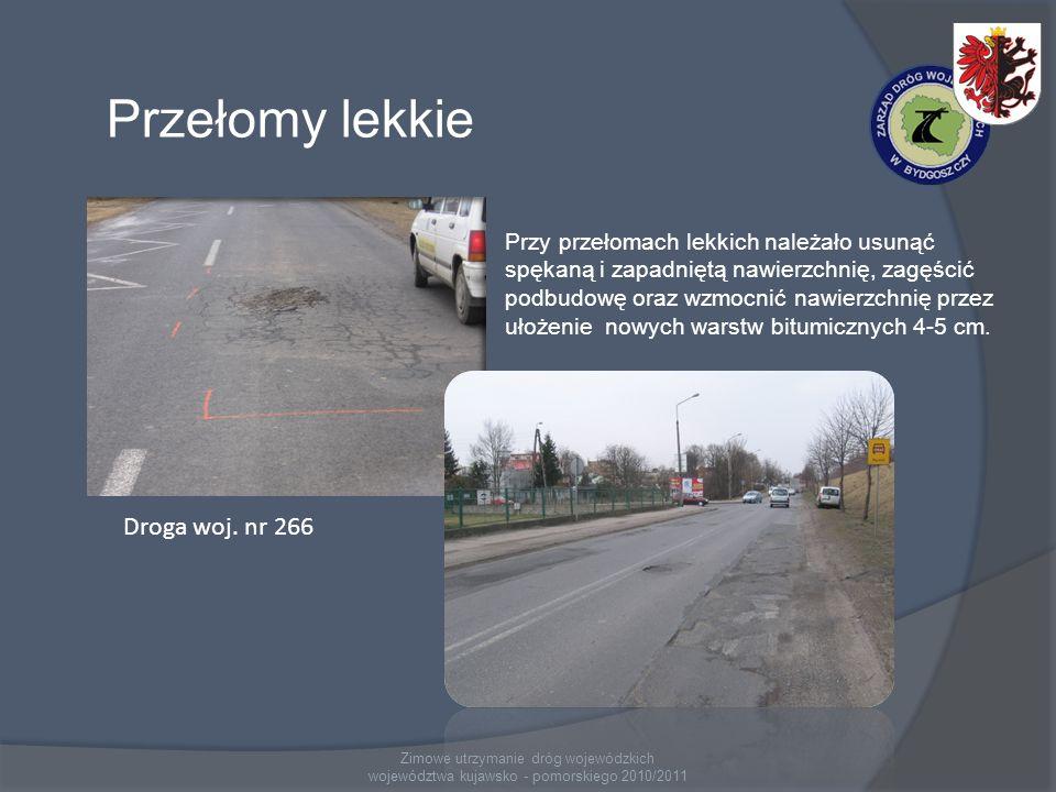 Zimowe utrzymanie dróg wojewódzkich województwa kujawsko - pomorskiego 2010/2011 Przełomy lekkie Droga woj.