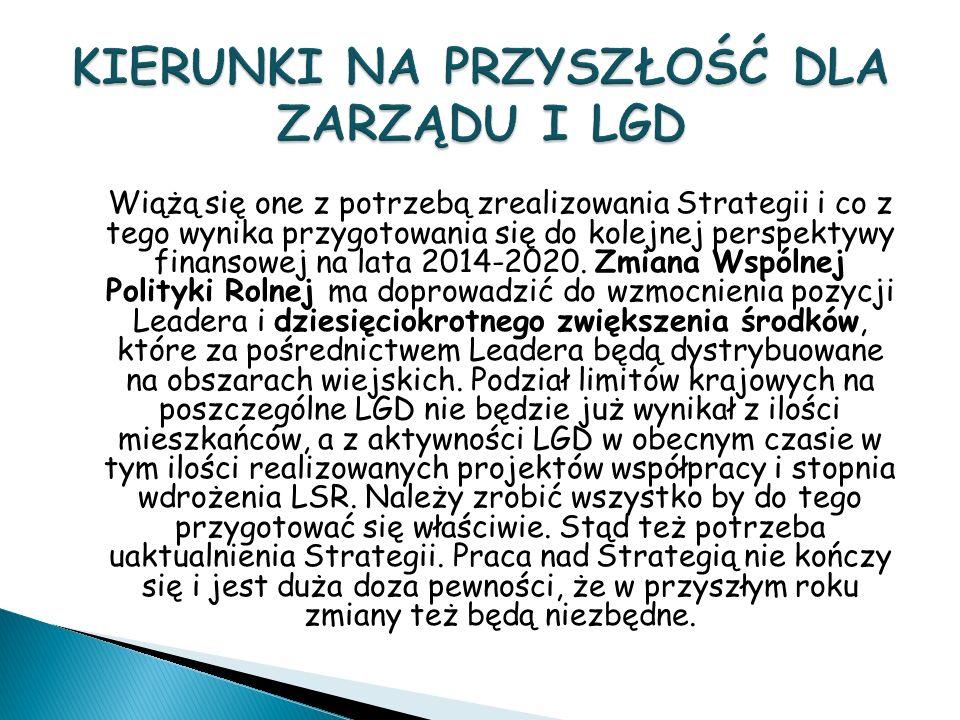 Wiążą się one z potrzebą zrealizowania Strategii i co z tego wynika przygotowania się do kolejnej perspektywy finansowej na lata 2014-2020.