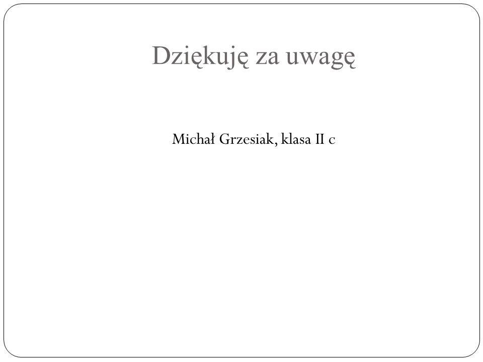Dziękuję za uwagę Michał Grzesiak, klasa II c
