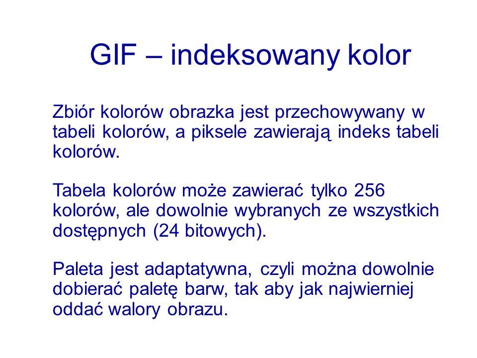 GIF – indeksowany kolor Zbiór kolorów obrazka jest przechowywany w tabeli kolorów, a piksele zawierają indeks tabeli kolorów. Tabela kolorów może zawi