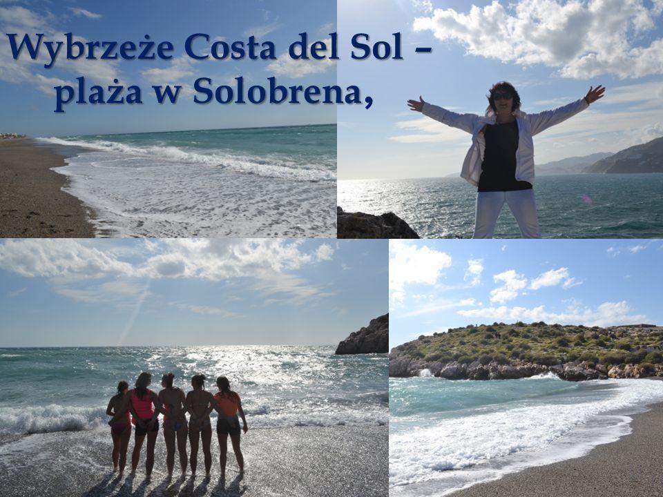 Wybrzeże Costa del Sol – plaża w Solobrena plaża w Solobrena,