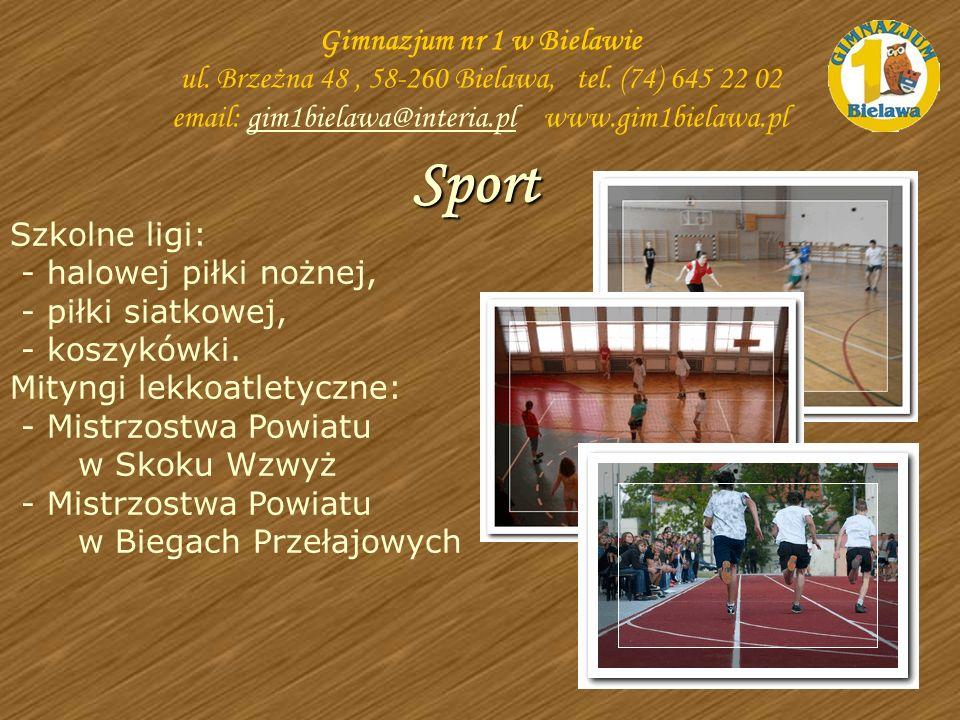 Szkolne ligi: - halowej piłki nożnej, - piłki siatkowej, - koszykówki. Mityngi lekkoatletyczne: - Mistrzostwa Powiatu w Skoku Wzwyż - Mistrzostwa Powi