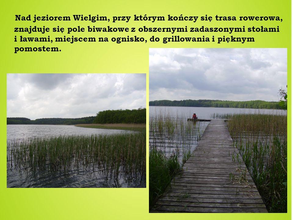 Nad jeziorem Wielgim, przy którym kończy się trasa rowerowa, znajduje się pole biwakowe z obszernymi zadaszonymi stołami i ławami, miejscem na ognisko