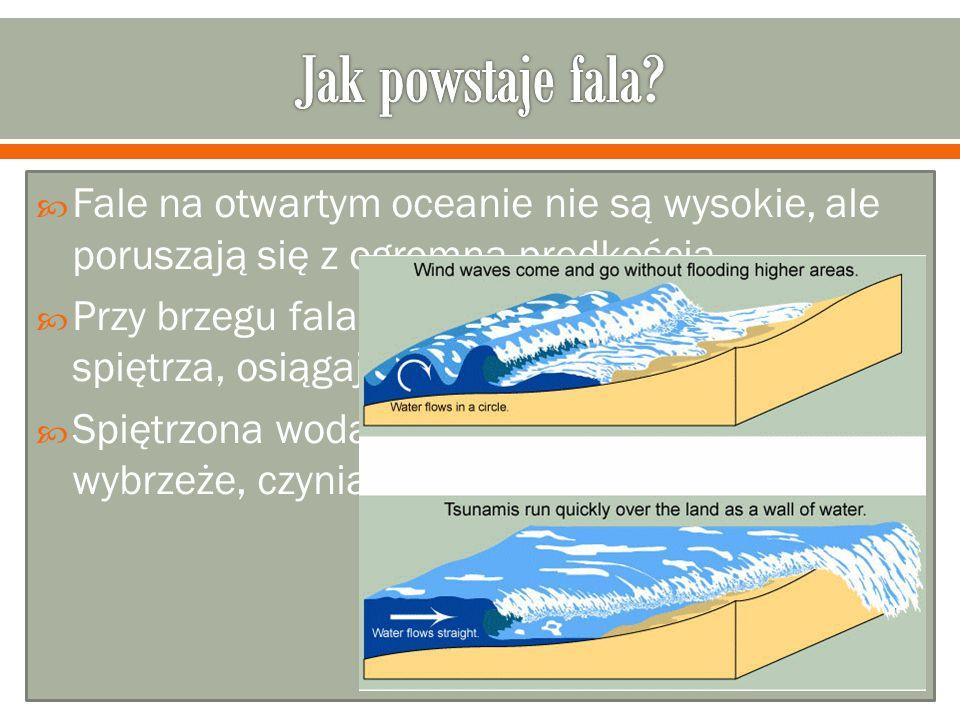 Fale na otwartym oceanie nie są wysokie, ale poruszają się z ogromną prędkością. Przy brzegu fala gwałtownie traci prędkość i się spiętrza, osiągając