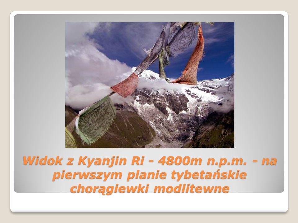 Widok z Kyanjin Ri - 4800m n.p.m. - na pierwszym planie tybetańskie chorągiewki modlitewne