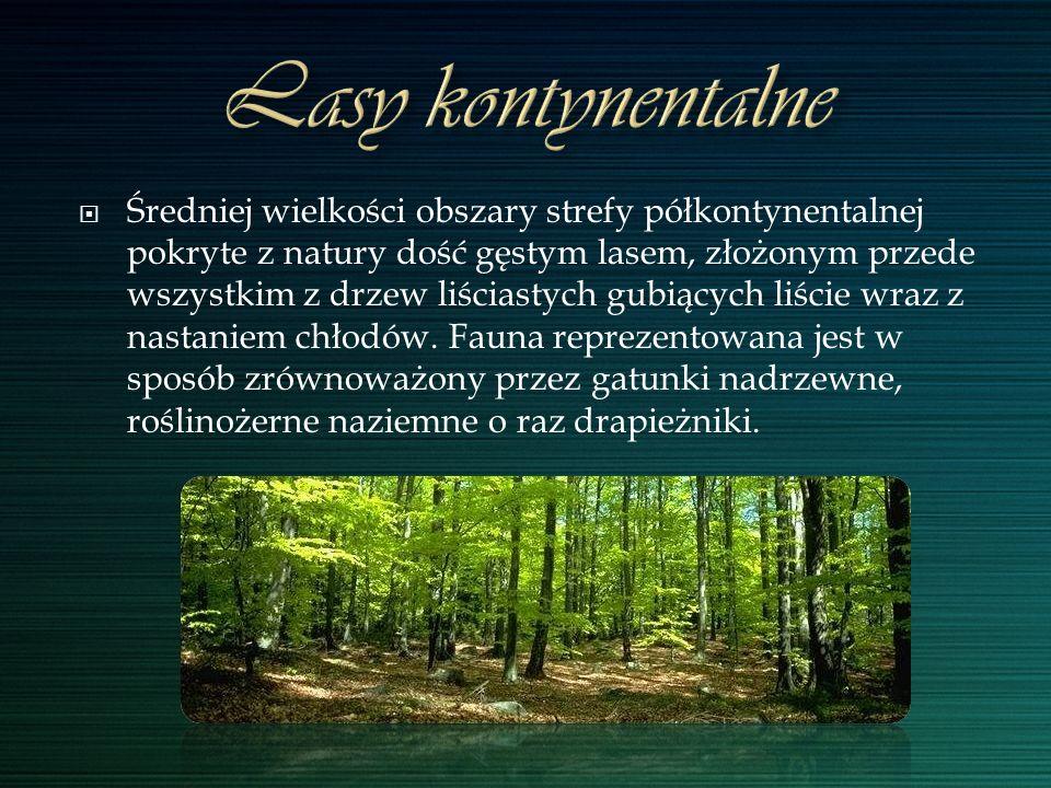 Średniej wielkości obszary strefy półkontynentalnej pokryte z natury dość gęstym lasem, złożonym przede wszystkim z drzew liściastych gubiących liście