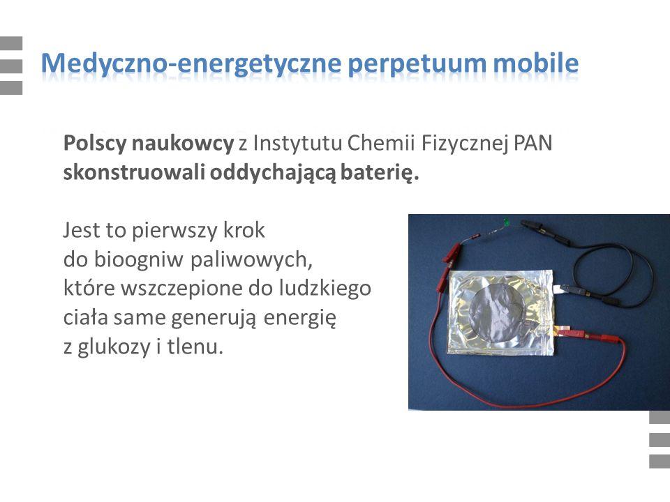 Polscy naukowcy z Instytutu Chemii Fizycznej PAN skonstruowali oddychającą baterię.
